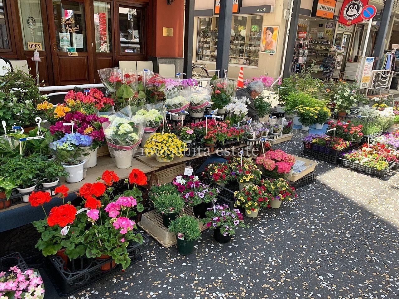 江東区高橋商店街 のら天市場 春のイベント お花屋さん 写真